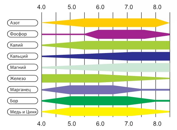 Таблица доступности элементов в зависимости от уровня pH.